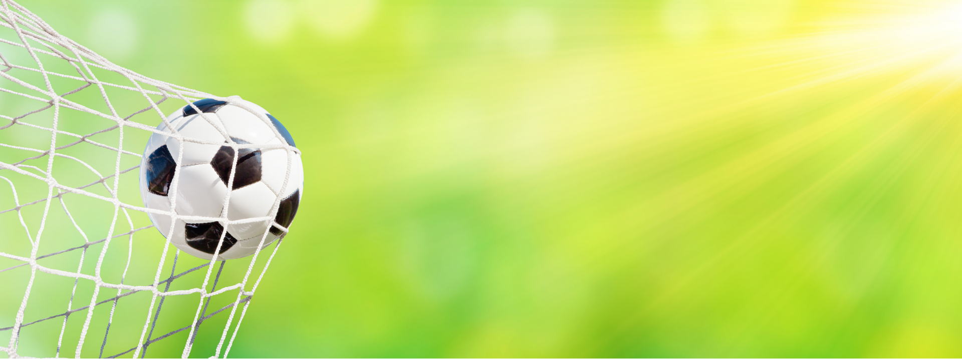Surface Sportives, Végétales, Minérales & Synthétiques